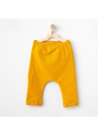 Andy Wawa Andywawa Kamp Ayısı Bebek Pantolonu Ac21079 Sarı